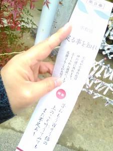 P_20160106_151938_HDR